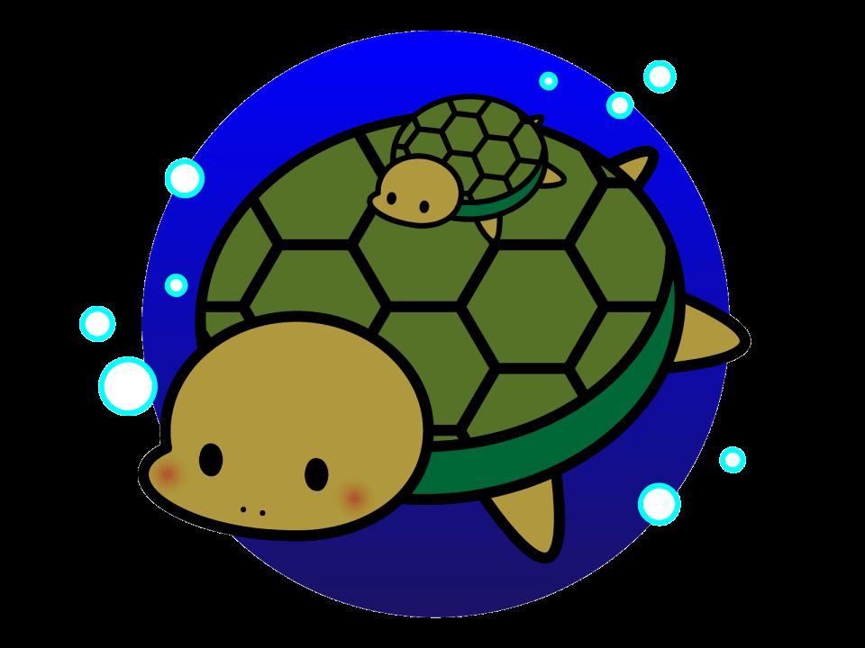 ウミガメの赤ちゃんクイズ