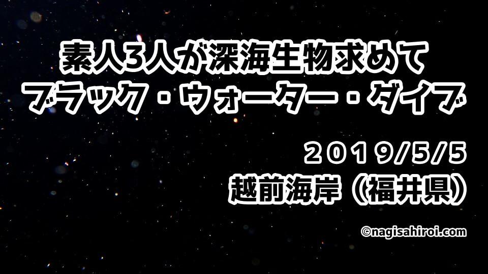 ブラック・ウォーター・ダイブ『BWD』越前海岸(福井県)2019年5月5日