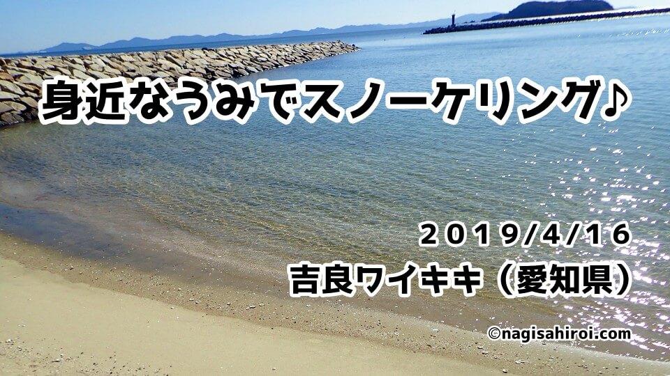 吉良ワイキキスノーケリング(愛知県)2019年4月16日