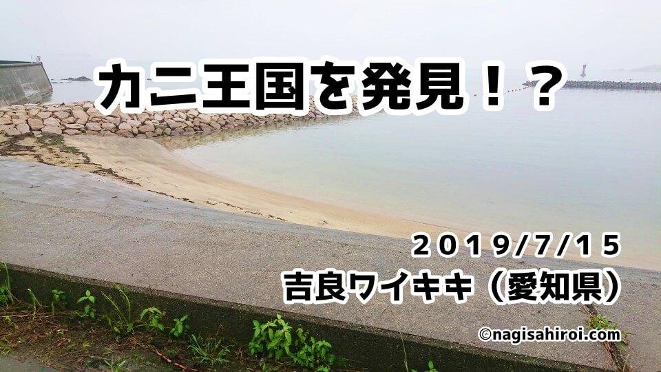吉良ワイキキスノーケリング(愛知県)2019年7月15日