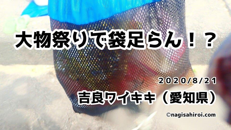 海中ゴミ拾い活動③吉良ワイキキビーチ(愛知県西尾市)