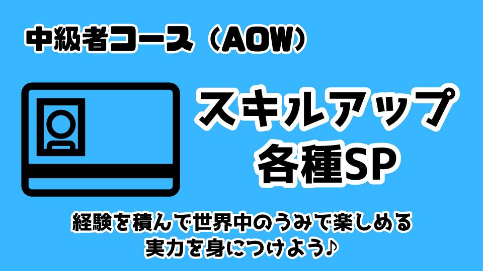 AOWDコース(中級者スキルアップ各種SP)