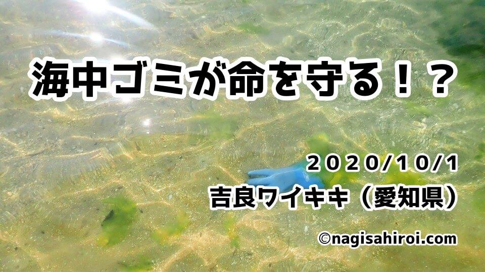 海中ゴミ拾い活動in吉良ワイキキビーチ(愛知県西尾市)2020年10月1日