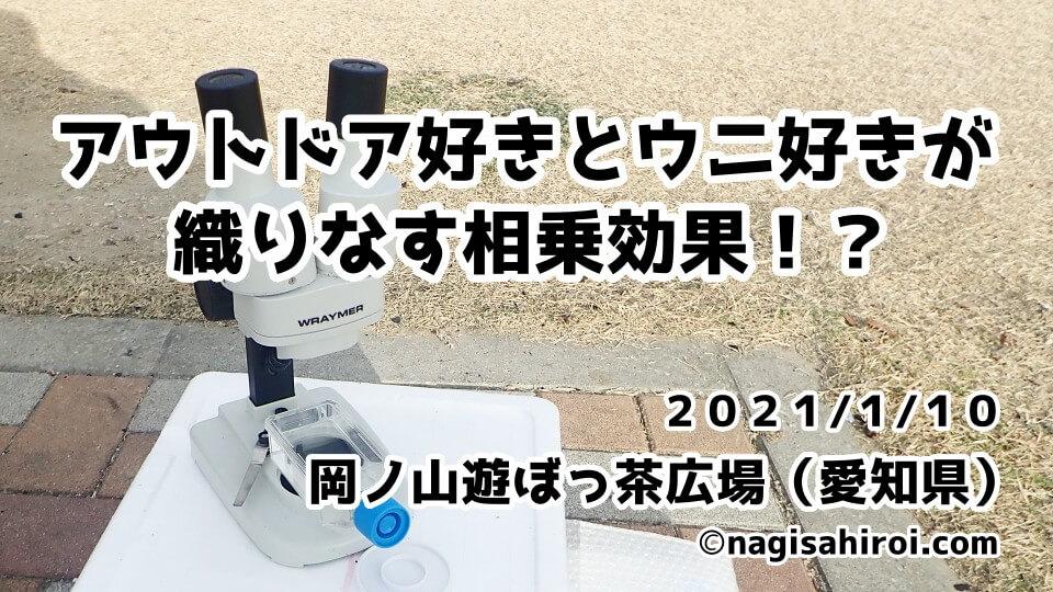 焚き火会in岡ノ山遊ぼっ茶広場(西尾市)2020年1月10日