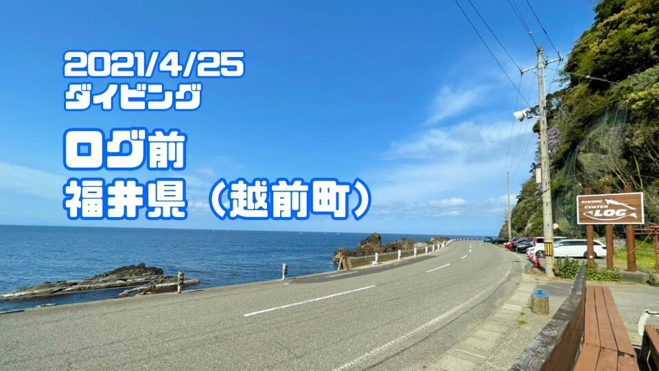 越前海岸ログ前ダイビング(福井県)2021年4月25日
