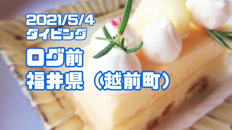 越前海岸ログ前ダイビング(福井県)2021年5月4日