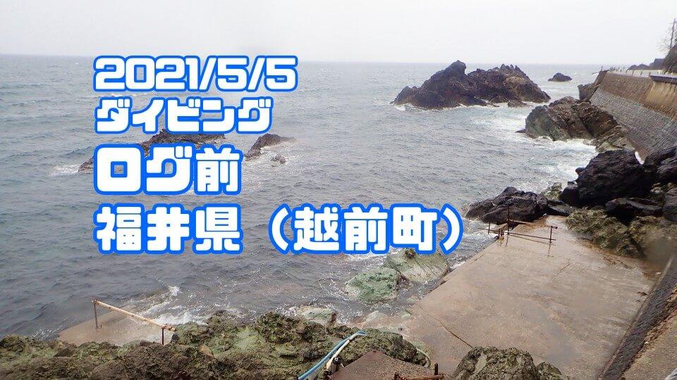 越前海岸ログ前ダイビング(福井県)2021年5月5日